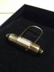 Neuer Swarovski Schlüsselanhänger Herren