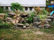 Gartenservice für naturnahe Gärten und