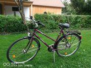 Epple Damenbike