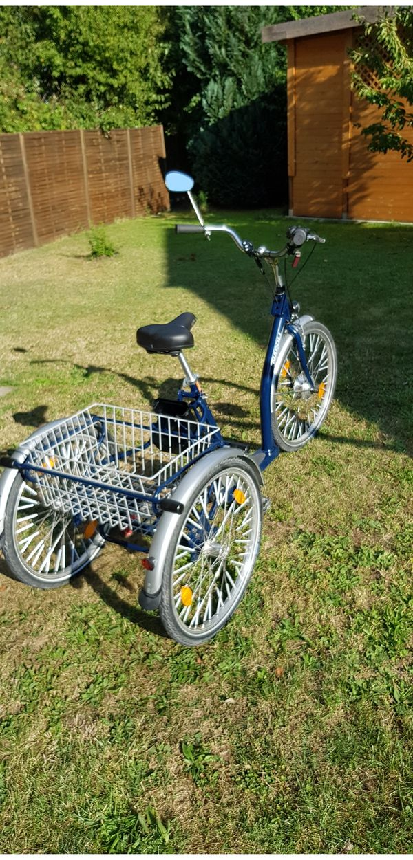 Pedelec E-Bike Elektrodreirad Therapierad Seniorenrad