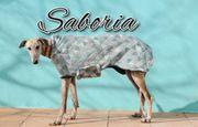 Erfüllen Sie Saboria ihren Lebenswunsch
