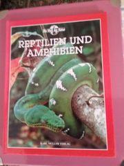 Buch - Reptilien und Amphibien