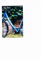 Damen-Fahrrad