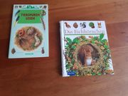 Eichhörnchen Meyers Kinderlexikon Tierspuren lesen