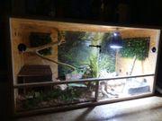Handzahme Schlange Terrarium