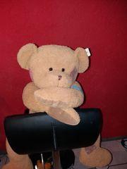 Flicken-Teddybär von Sunkid
