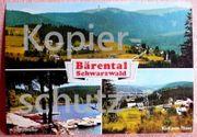 Alte Ansichtskarte Feldberg Bärental im