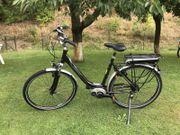 E-Bike Diamant Achat Deluxe RH