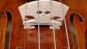 Geigenunterricht Violinunterricht im Großraum Bonn