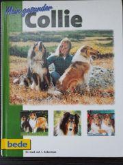 Mein gesunder Collie Buch