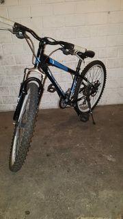 Fahrrad von Rex 26 Zoll