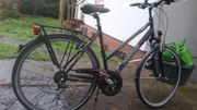 Gebrauchtes Damenrad Kalkhoff sw 55cm