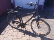e-Bike Prophete e300