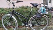 Fahrrad Trekking