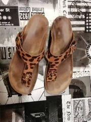 Getragene Schuhe Schön stinkig