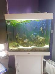 Juwel Aquarium 200 Liter