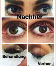 Wimpernlifting Lashlifting Schulung
