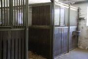 Pferdeboxen Boxenelemente Bongossiholz Schiebetür
