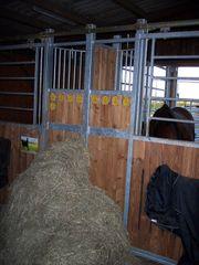 Große Pferdebox in familiärem Stall