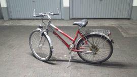 Damen-Fahrräder - Damen Fahrrad