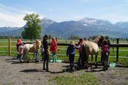Ponyreiten Reiten Reitunterricht Lamaspaziergang