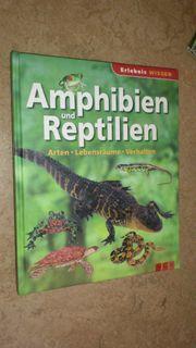 Buch Erlebnis Wissen - Amphibien und