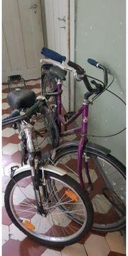 2 Fahrräder werden verkauft Pro