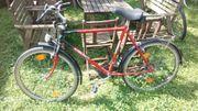 Herren Fahrrad Alfira