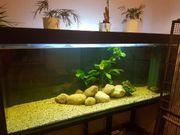 480 liter Aquarium komplett