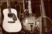 Gitarren Player Banjo Gesang gesucht