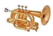 Prof Malte Burba Taschen - Trompete
