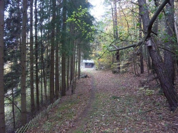 Romantische Berghütte mit Waldgrundstück und