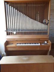 Walcker -Orgel