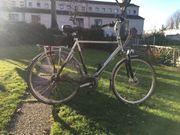 Herren Fahrrad Hollandrad Gazelle Medeo
