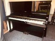 Yamaha U3 bis Klavier
