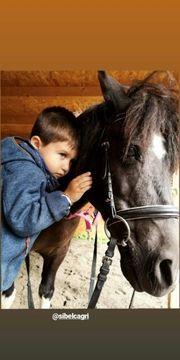 Kindergeburtstag Reitercamp Reit-pädagogisches Reiten