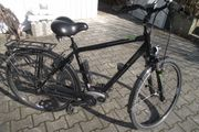 Herren City E-Bike fast wie