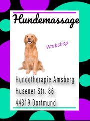 Hundemassage Workshop