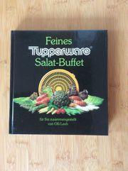 Feines Tupperware-Salat-Buffet