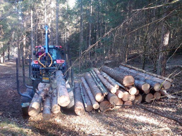 Brennholz incl Lieferung AUSVERKAUFT