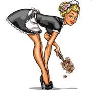 Putzfrau Haushaltshilfe