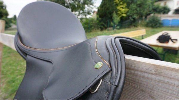 Dressur-Sattel für kurze Rücken Neuwertig