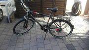 Fahrrad Pegasus Solero SL Herren