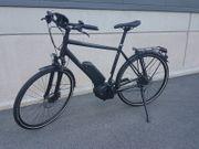 Diamant Elan Nyon E-bike
