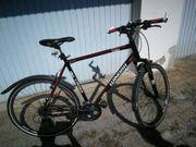 Herren Bike
