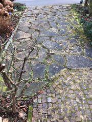 Prondorfer Natursteinplatten und Pflastersteine gebraucht