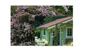 Suche Garten mit Häuschen