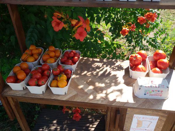 Saisonales Gemüse und Obst und