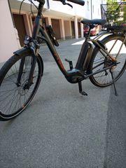 Damen-E-Bike