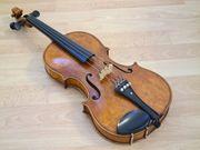 Geige Schülergeige